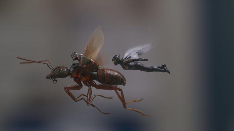 Ant Man y la Avispa